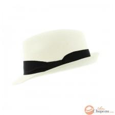 Straw hat trilby shape